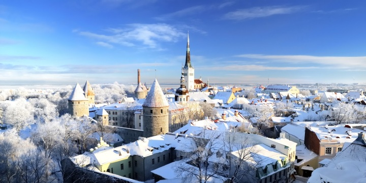 Tallinn city. Estonia. Snow on trees in winter, panoram view