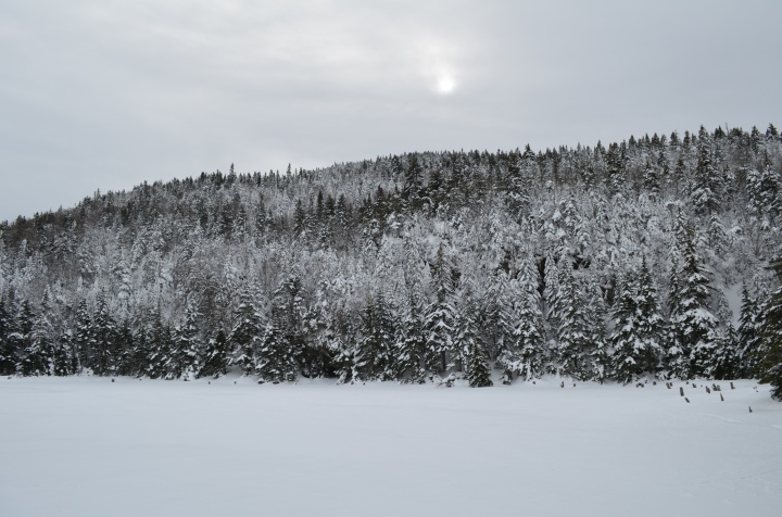 5 WINTER WONDERLAND HIKES TO DISCOVER IN THE EASTERN TOWNSHIPS